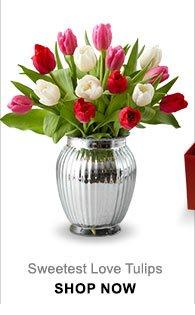 Festive Red Roses