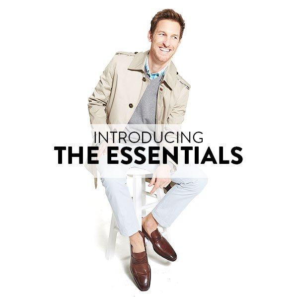 INTRODUCING THE ESSENTIALS