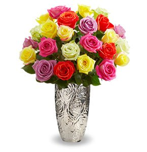 Two Dozen Assorted Roses Shop Now