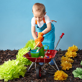 Gardener-in-Training Collection