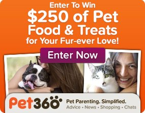 Enter To Win $250 of Pet Food & Treats for Your Fur-ever Love! Enter Now