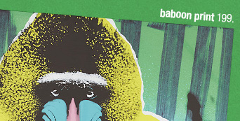 baboon print 199.