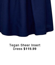 Tegan Sheer Insert Dress.
