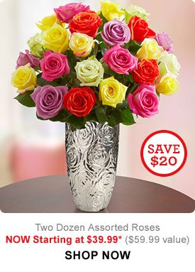 Two Dozen Assorted Roses NOW Starting at $39.99* ($59.99 value) Shop Now