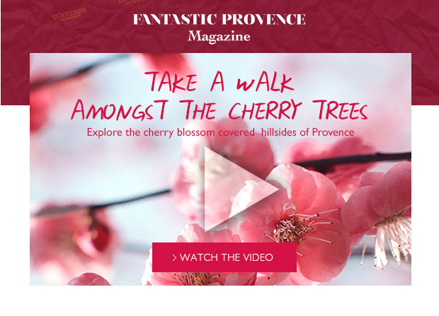 Walk Through the Cherries Video