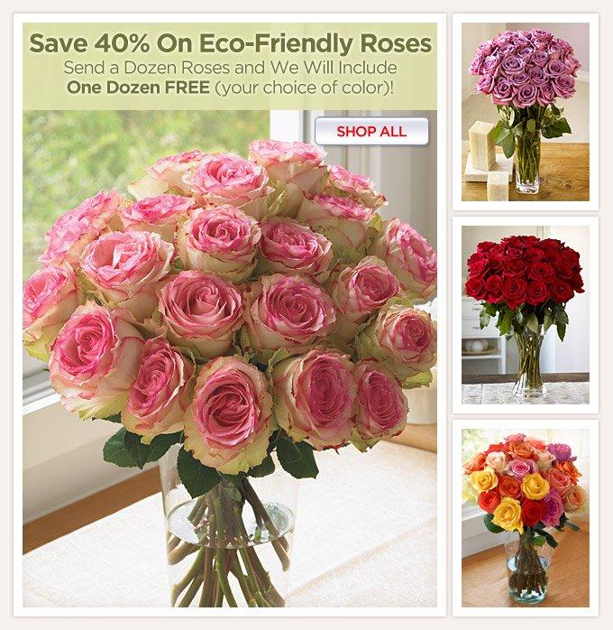 Roses-Buy 1 Doz, Get 1 FREE!