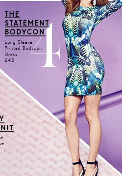 Long Sleeve Printed Bodycon Dress