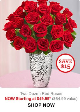 Two Dozen Red Roses Now starting at $49.99 ($64.99 value) Shop Now