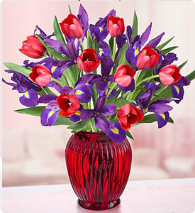 Hugs & Kisses™ Tulip & Iris Shop Now