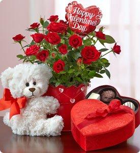 Bundle of Love Rose Plant Shop Now