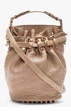 ALEXANDER WANG Brown Diego Lambskin Bucket Bag for women