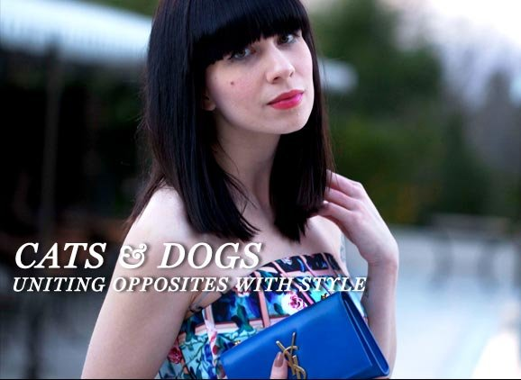 Cats & Dogs Style Lab