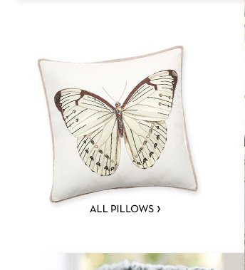 ALL PILLOWS