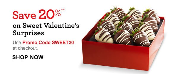 Save 20%** on Sweet Valentine's Surprises Use Promo Code SWEET20 at checkout. Shop Now