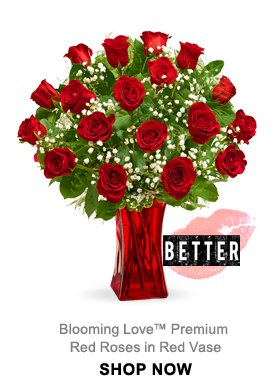 Blooming Love™ Premium Red Roses in Red Vase Shop Now