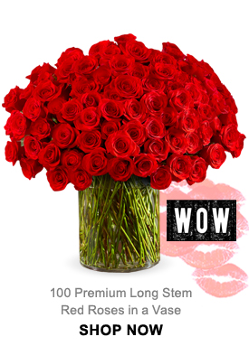 100 Premium Long Stem Red Roses in a Vase Shop Now