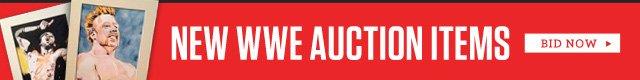 WWE Auction