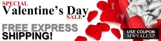 Free Express Shipping - Get your Valentine's Day Gifts On Time!