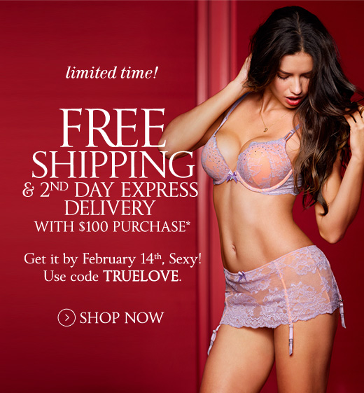 Free Shipping + 2nd Day Express on $100