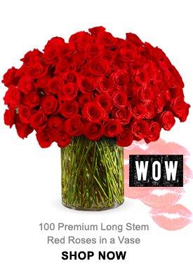 100 Premium Long Stem Red Roses in a Vase Shop Now