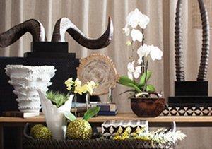 Design Inspiration: Africa