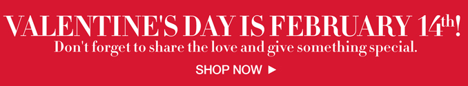 Valentine's Day Gift Shop.