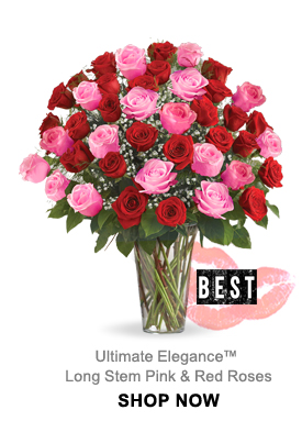 Ultimate Elegance™ Long Stem Pink & Red Roses Shop Now