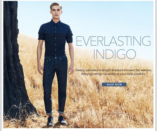 Everlasting Indigo