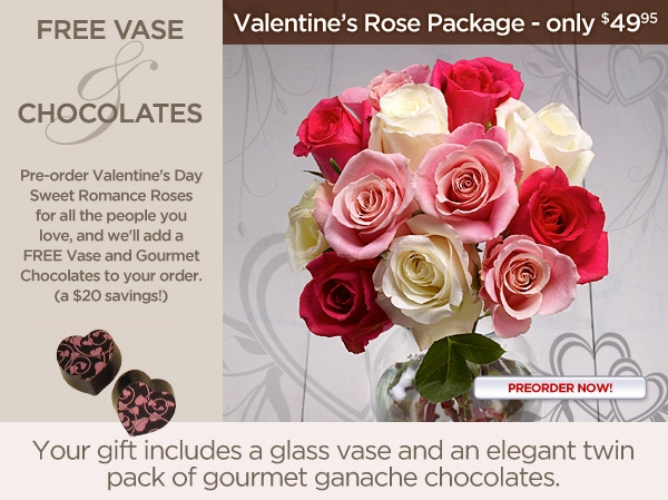 Pre-Order Valentine's Day Rose Package