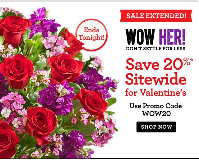 Today Only!  Save 20%* Sitewide for Valentine's Use Promo Code WOW20 Shop Now