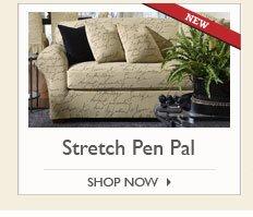 Stretch Pen Pal