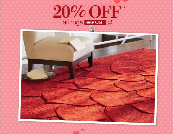 20% OFF** all rugs | SHOP RUGS > | ends 2/24