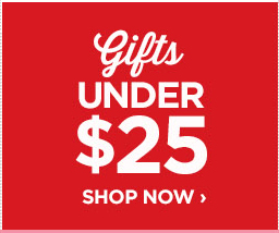 GIFTS UNDER $25                                  SHOP NOW ›