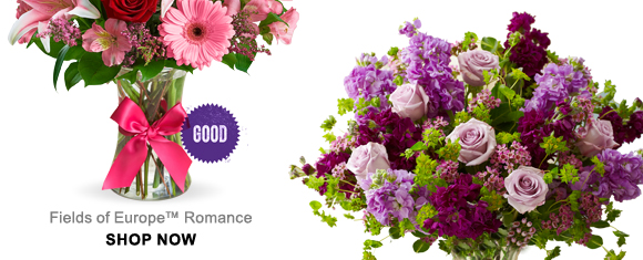 GOOD Fields of Europe™ Romance SHOP NOW