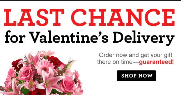 Last Chance for Valentine's Delivery! Order now and get your gift there on time—guaranteed!  Shop Now   Rule No. 100 Go for the guaranteed wow. #HOW2WOW Shop Now
