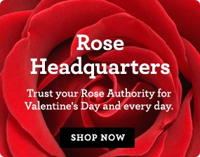 RRose Headquarters Trust your Rose Authority for Valentine's Day and every day. Shop Now