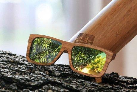 Seaval Sunglasses