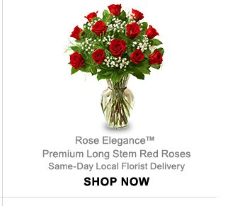 Rose Elegance Premium Long Stem Red Roses Same-Day Local Florist Delivery Shop Now