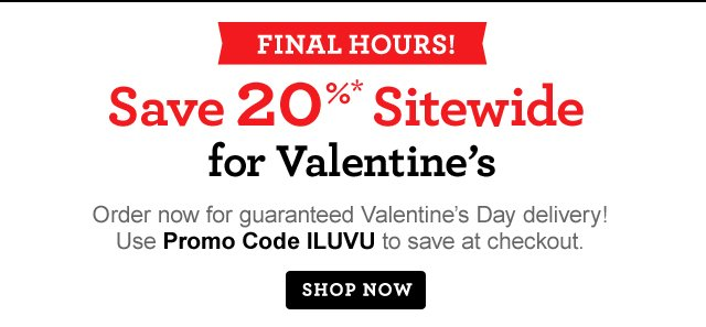 FINAL HOURS! Save 20%* Sitewide for Valentine's Day  Order now for guaranteed Valentine's Day delivery! Use Promo Code ILUVU to save at checkout.  Same-Day Delivery Still Available!  Shop Now