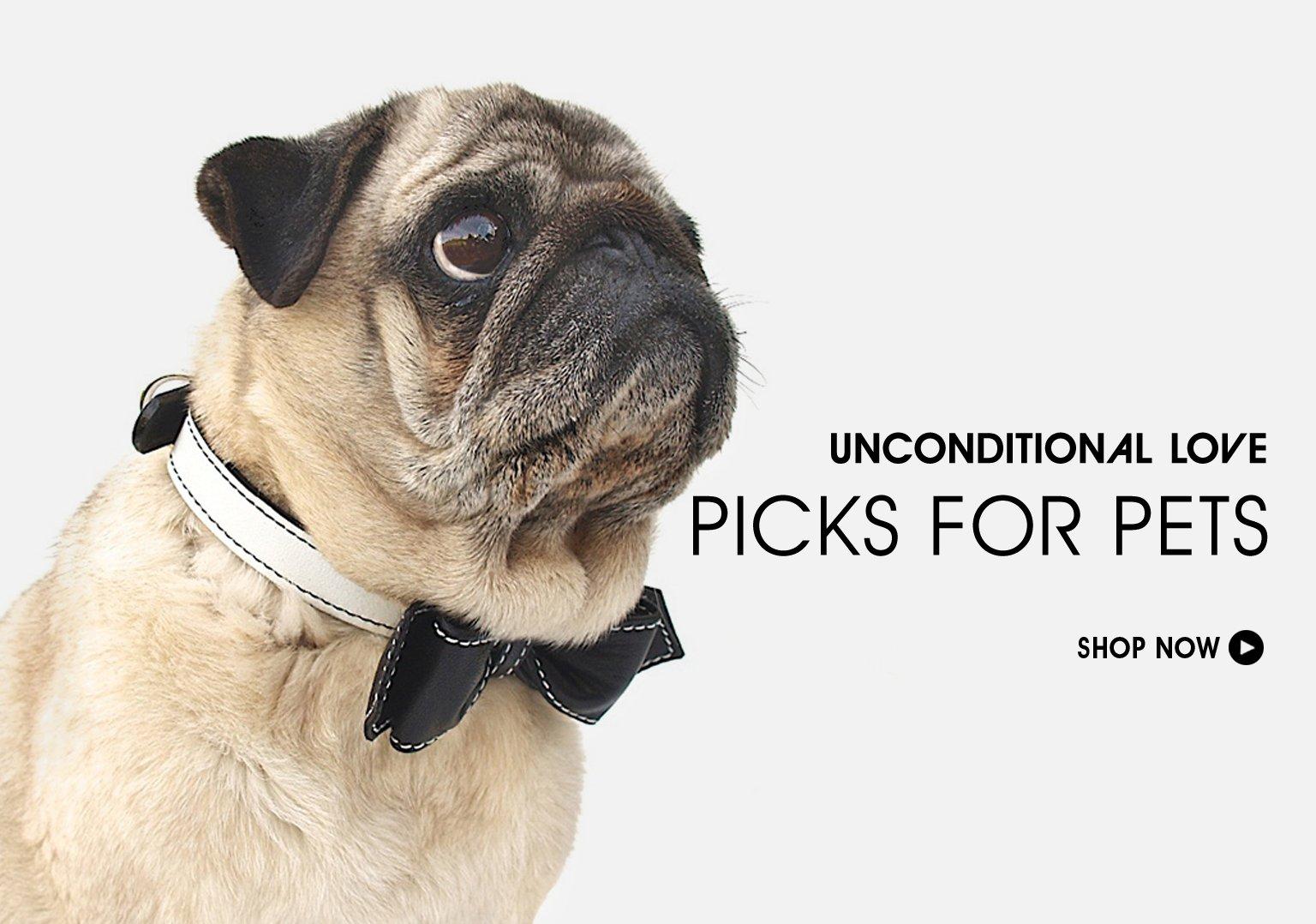 Unconditional Love. Shop Picks For Pets.