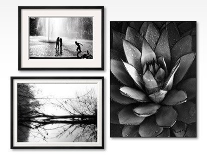 FOUNTAIN PLAY By: Evan Morris Cohen; TOPPOINT By: Sharon Wish; CENTURY PLANT By: Brett Weston