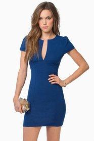 Aria Bodycon Dress 39