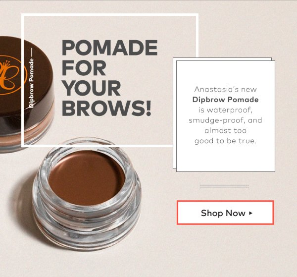 Anastasia's new Dipbrow Pomade is waterproof, smudge-proof, and almost too good to be true.