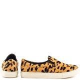 Ecentric - Leopard