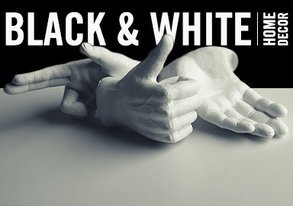 Shop Black & White for Your Walls & More
