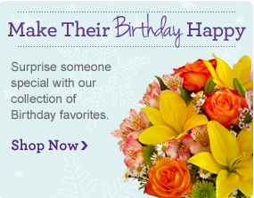Same-Day Delivery Send flowers & gifts in a flash! Shop Now