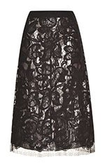 Lace Skirt With Silver Silk Lame Lining