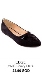 EDGE CRIS Pointy Flats with Transparent Detail - 22.90 SGD