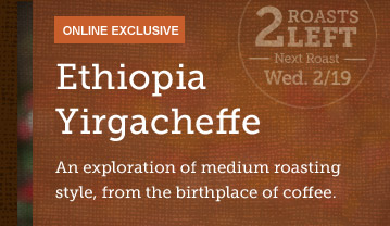 ONLINE EXCLUSIVE -- Ethiopia Yirgacheffe -- 2 ROASTS LEFT -- Next Roast Wed. 2/19 -- An exploration of medium roasting style, from the birthplace of coffee.