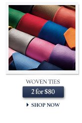 Woven Ties - 2 for $80 - SHOP NOW